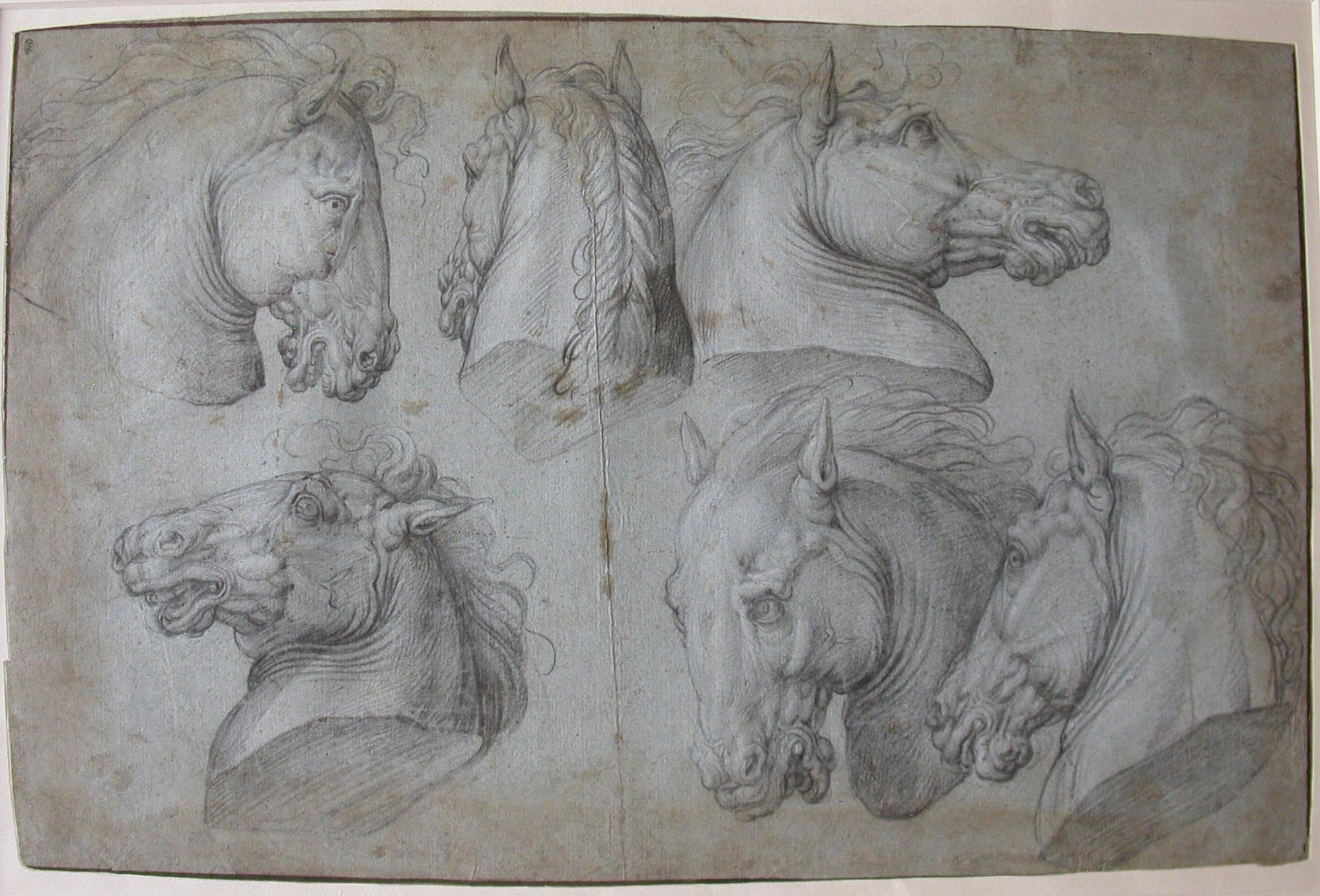 Giorgio Vasari, Studies of horses heads, Sixteenth century, Parigi, Musée du Louvre