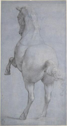Anonimo fiorentino, Cavallo impennato, XVI sec. © Metropolitan Museum - New York