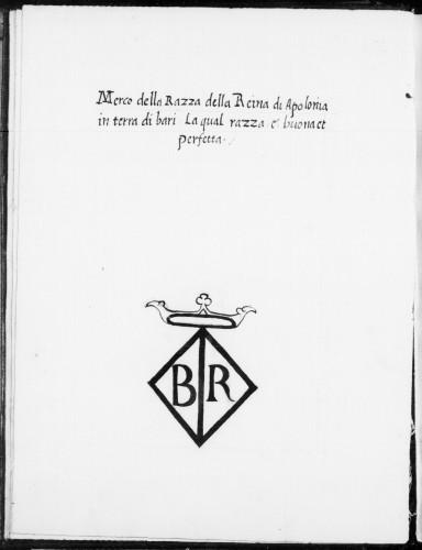 Federico Grisone, Razze del Regno, manoscritto 9246, carta 5v Biblioteca Nacional de España – Madrid