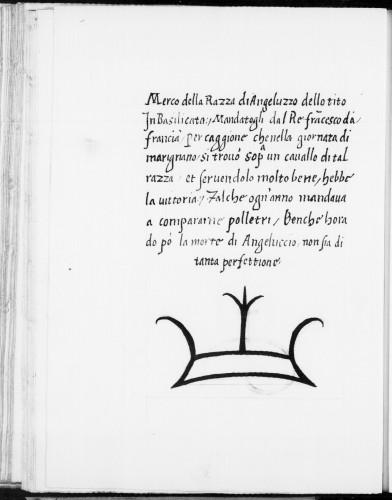 Secondo Grisone questo era il marchio del cavallo montato da Francesco I nella battaglia di Marignano Federico Grisone, Razze del Regno, manoscritto 9246, carta 51v Biblioteca Nacional de España – Madrid
