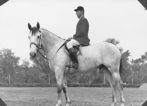 Riding Oracle. 1st place in the National Breeding Award of 1967, in Rome, Villa Borghese.