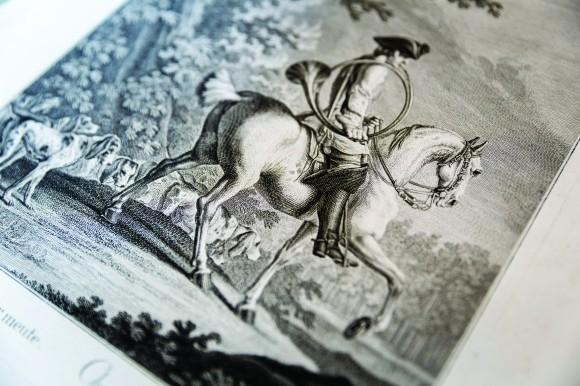 Moltissime le stampe di argomento equestre esposte nelle sale, tra le quali le bellissimi incisioni Johann Elias Ridinger (1698-1767)