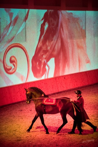 The solo on the long reins was accompanied by opera arias. Paulo Sérgio Perdigão and Que-jovem Picture © Melis Yalvac