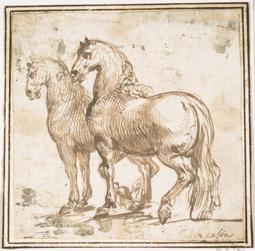 Two horses - Attributed to Francesco Allegrini - 1624-1663 © Metropolitan Museum of Art - New York