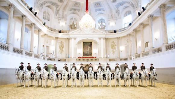 La Scuola Spagnola di Vienna