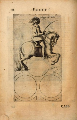 The first equestrian treatise published in Vienna is